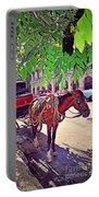 Havana, Cuba Portable Battery Charger