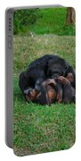 69- Monkey Business Portable Battery Charger