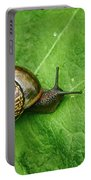 Copse Snail Portable Battery Charger