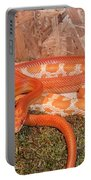 Corn Snake Portable Battery Charger