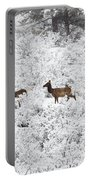 Elk In Deep Snow In The Pike National Forest Portable Battery Charger
