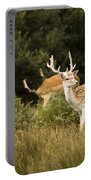 Fallow Deer Portable Battery Charger