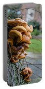 Mushroom Art Portable Battery Charger