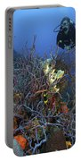 Scuba Diver Swims Underwater Amongst Portable Battery Charger by Terry Moore