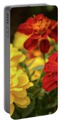 Tagetes Patula Fully Bloomed French Marigold At Garden In Octob Portable Battery Charger