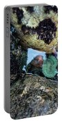 Wedding Rock At Patrick's Point State Park - California Portable Battery Charger