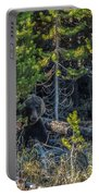 791 In The Forest Portable Battery Charger