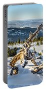 Amazing Winter Landscape With Frozen Snow-covered Trees On Mountains In Sunny Morning  Portable Battery Charger