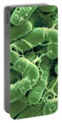 Bacillus Thuringiensis Bacteria Portable Battery Charger
