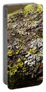 Bare Tree Branches In Early Spring Portable Battery Charger