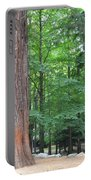 Forestry Portable Battery Charger