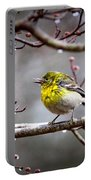 Img_0001 - Pine Warbler Portable Battery Charger