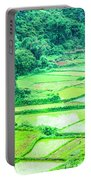 Rice Fields Scenery Portable Battery Charger