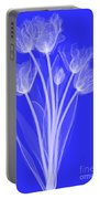 Tulips, X-ray Portable Battery Charger