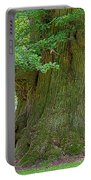 800 Years Old Oak Tree  Portable Battery Charger by Heiko Koehrer-Wagner