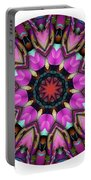 802-04-2015 Talisman Portable Battery Charger