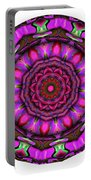 805-04-2015 Talisman Portable Battery Charger