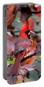 8624-001 - Northern Cardinal Portable Battery Charger