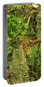 Mosses And Liverworts 8861 Portable Battery Charger