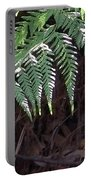 Australia - Hare's Foot Fern Portable Battery Charger