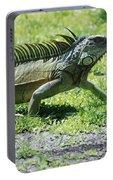 I Iguana Portable Battery Charger