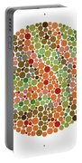 Ishihara Color Blindness Test Portable Battery Charger