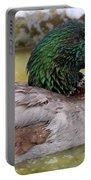 Mallard Duck Portable Battery Charger