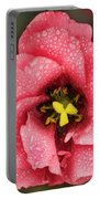Nice Flower Portable Battery Charger