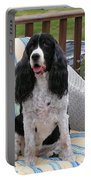 #940 D1034 Farmer Browns Springer Spaniel Portable Battery Charger