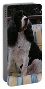 #940 D1045  Farmer Browns Springer Spaniel Portable Battery Charger