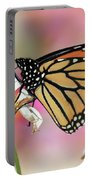 A Beautiful Monarch Portable Battery Charger