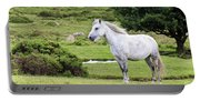 A Beautiful White Dartmoor Pony, Devon, England Portable Battery Charger
