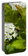 A Bee And A Fly Meet On A Flower Portable Battery Charger