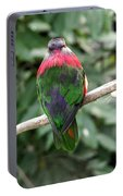A Bird's Perspective Portable Battery Charger