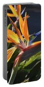 A Bunch Of Bird Of Paradise Flowers Bloomed  Portable Battery Charger