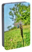 A Butterfly On A Luminous Shining Meadow Portable Battery Charger