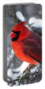 A Cardinal Day... Portable Battery Charger