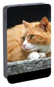 A Cat Named 'kitty' Portable Battery Charger