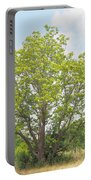 A Catalpa Summer Portable Battery Charger