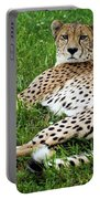 A Cheetah Resting On The Grass Portable Battery Charger