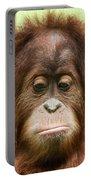 A Close Portrait Of A Sad Young Orangutan Portable Battery Charger
