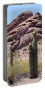 A Couple Of Cacti In Phoenix Portable Battery Charger