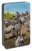 A Dazzle Of Zebras Portable Battery Charger