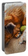 A Dog And His Tennis Ball Portable Battery Charger