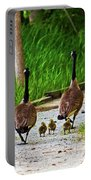 A Family Stroll Portable Battery Charger