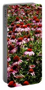 A Field Of Echinacea Portable Battery Charger