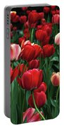 A Field Of Tulips Portable Battery Charger
