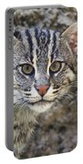A Fishing Cat Portrait Portable Battery Charger