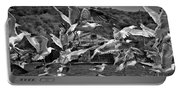A Flock Of Seagulls Flying High To Summer Sky Portable Battery Charger
