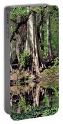 A Florida Riverine Forest 2 Portable Battery Charger